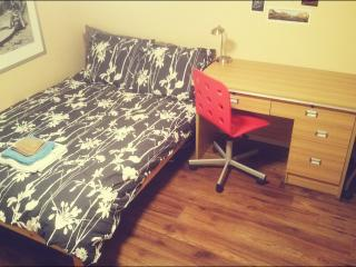Independent studio w/parking_safe green area by subway,24 hrs buses, main roads - Toronto vacation rentals
