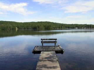 5 Acres Lakefront Estate Villa w/ private Beach ~ RA65711 - Litchfield vacation rentals