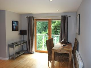 Beautiful Two-bed Quayside Apartment - Newcastle upon Tyne vacation rentals