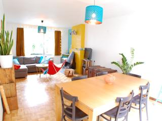 Spacious and cosy house Center of Ghent - Ghent vacation rentals