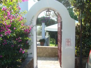 Charming 3 bedroom Vacation Rental in Anacapri - Anacapri vacation rentals