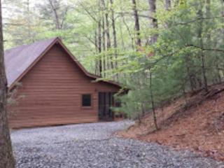 Minutes from The Blue Ridge Parkway - Deep Gap vacation rentals