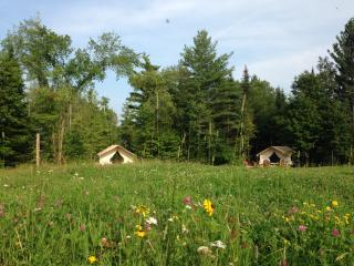 GLAMP THOMAS ON PRETTY ADIRONDACK FARM - North River vacation rentals