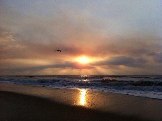 Pelican Watch 307 - Carolina Beach vacation rentals