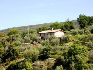 Detached villa with private pool near village - Montecchio vacation rentals
