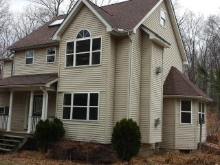 5 Bd Home, Totally Privacy, 10 acre, Secluded - East Stroudsburg vacation rentals