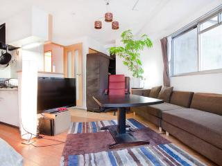 Central and Modern Apartment near Nijo - Kyoto vacation rentals