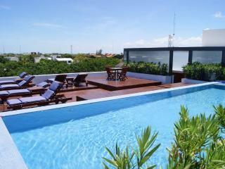 OCEAN VIEW - 1 BLOCK FROM THE 5TH AVENUE - Playa del Carmen vacation rentals