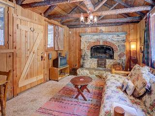 Rustic, warm cabin w/outdoor deck, woodland views - close to town! - Idyllwild vacation rentals