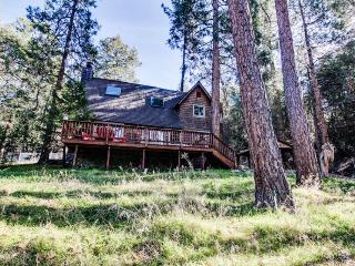 Warm, upscale lodge w/sun deck & wood stove near downtown! - Idyllwild vacation rentals
