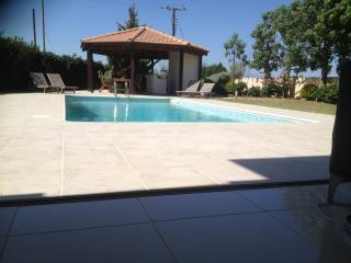 Holiday villa with private pool - Mazotos vacation rentals