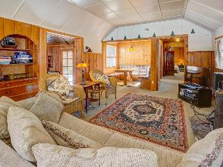 Dog-friendly cabin in the woods with private hot tub! - Idyllwild vacation rentals