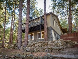Quiet, warm cabin in wooded setting w/ foosball table and room for the family! - Idyllwild vacation rentals