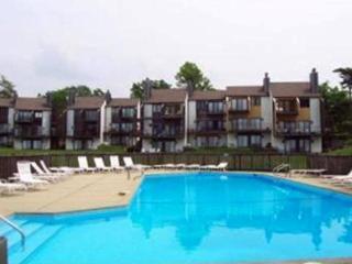 Bent Tree 16 - South Haven vacation rentals
