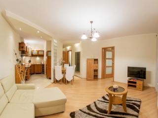 Apartament Grzybowska Due - Warsaw vacation rentals