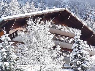 La Colline - Champex vacation rentals