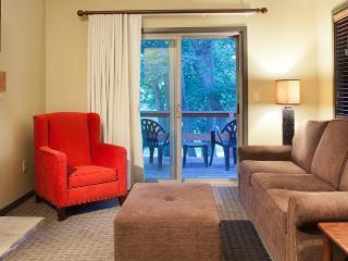 Christmas Mountain Villa, Wisconsin Dells - Wisconsin Dells vacation rentals