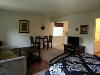 Nice Mountain View Apartment rental with Internet Access - Mountain View vacation rentals