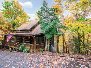 Cozy Cabin with Internet Access and A/C - Gatlinburg vacation rentals