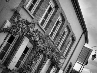 Maison typique champenoise au coeur du vignoble - Hautvillers vacation rentals