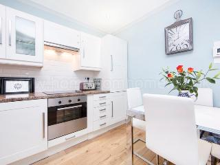 Beautifully decorated and comfortable one bedroom apartment just minutes from the river Thames - London vacation rentals