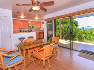 Nice Wailea House rental with Television - Wailea vacation rentals