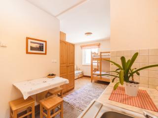 Apartment Studio Rogla (4 persons) - Zrece vacation rentals