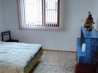 2 bedroom Apartment with Television in Bansko - Bansko vacation rentals