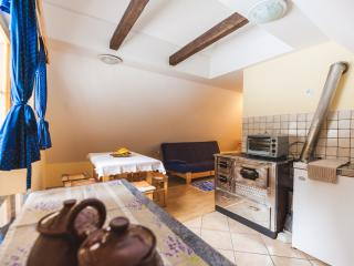 Pohorje Apartment 1 (6 persons) - Zrece vacation rentals