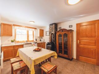 Pohorje Apartment 2 (4 persons) - Zrece vacation rentals