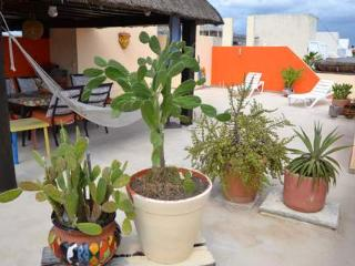 Penthouse with Terrace - Playa del Carmen vacation rentals