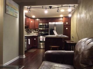 1 bedroom Condo with Internet Access in Denver - Denver vacation rentals