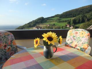 Vacation Apartment in Sasbachwalden (# 6273) ~ RA63057 - Sasbachwalden vacation rentals