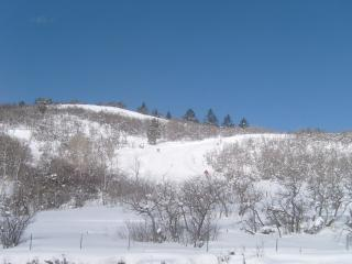 SUNDANCE AVAILBLE- Hyatt Escala-Ski In/Out - Park City vacation rentals