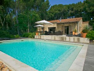 Lovely House with Private Outdoor Pool and Private Outdoor Pool - La Roque sur Pernes vacation rentals