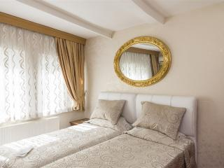 Heart of the citySultanahmet Square - Istanbul vacation rentals
