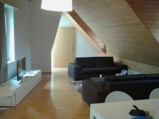 1 bedroom Apartment with Internet Access in Neuchâtel - Neuchâtel vacation rentals