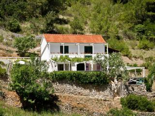 Bright 5 bedroom Cove Jagodna (Brusje) Villa with Internet Access - Cove Jagodna (Brusje) vacation rentals