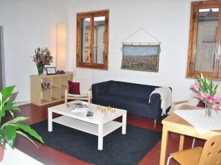 Liahona 4 bedroom Apartment in ideal location - Florence vacation rentals