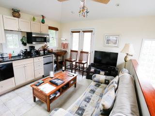Candler Park Aerie Suite - Atlanta vacation rentals
