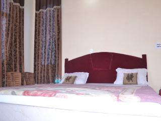 Bright Bed and Breakfast with Internet Access and Television - Orchha vacation rentals