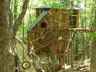 The Hermit Thrush Treehouse - West Pawlet vacation rentals