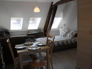 Azeca meublés de tourisme et professionels - Bar-sur-Seine vacation rentals