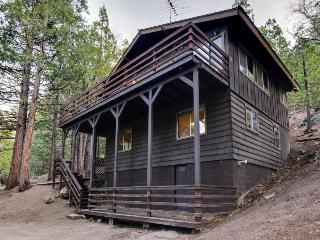 Modern Mtn Home w/ Woodland Views, Fireplace, Wraparound Deck! - Idyllwild vacation rentals