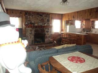 Rustic Retreat at Big Bear Lake - Big Bear City vacation rentals