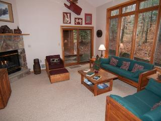 Mountain Shadows - 169 Woods End Court - Canaan Valley vacation rentals