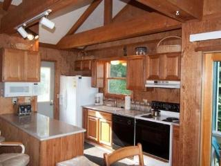 3 bedroom House with Internet Access in Canaan Valley - Canaan Valley vacation rentals