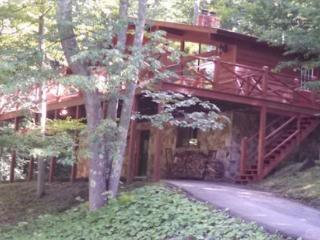 Our Greyt Escape - 711 Mountainside Road - Canaan Valley vacation rentals