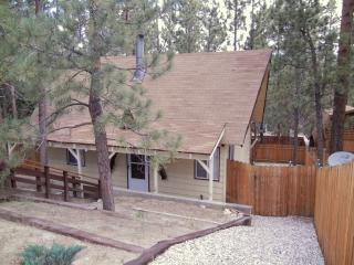 Pine House - Big Bear City vacation rentals