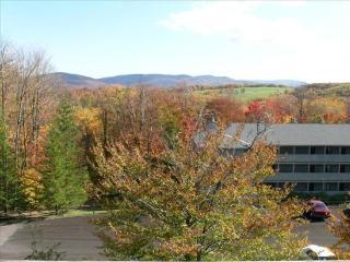 Beaver Ridge 109 - Canaan Valley vacation rentals
